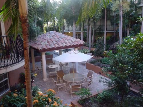 rickyhanson-ft-lauderdale-wilton-manors-florida-ricky-hanson-vacation-photo-pic-palmtree (6)